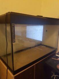 120 liters aquarium with stand