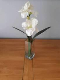 White lillies in vase