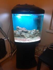 Full marine aquarium ONO