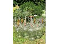 17x Glass Demijohn bottles