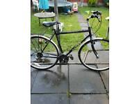 Dawes Street cruiser bike adult