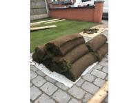 13 rolls of turf
