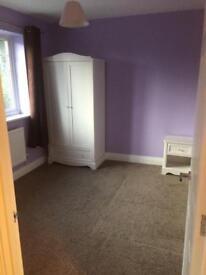 Double bedroom including bills to rent in Woodley