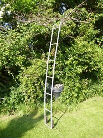 Ladder for motor home or Van