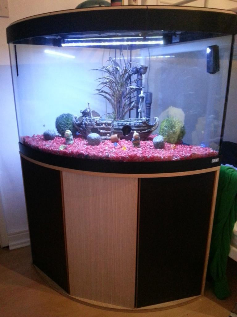 Fluval 205 external filter purchase sale and exchange ads for Fluval fish tank
