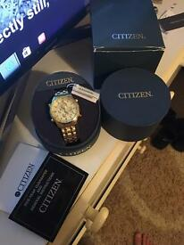 Citizen Men Gold watch