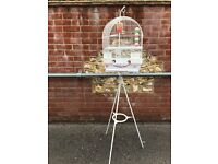 Bird cage with stand and accessories