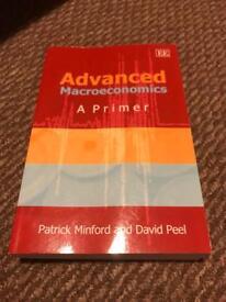 Advanced Macroeconomics: A Primer by Patrick Minford and David Peel