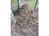 Free Oak wood chippings