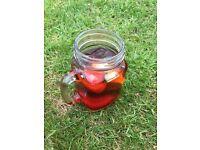 Mason Style Glass jars/Glasses perfect for Weddings