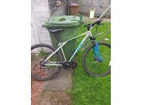Bike gt timberline