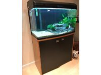 Aquaone 850 160L Fish Tank, 1 Year Old, Excellent Condition