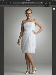Plus size wedding dress or special occasion dress