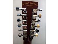 Tanglewood Premier series 12 strings electro acoustic