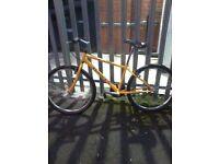 Dawes Kokomo Mountain bike (road tyres)