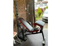 Incline weight bench and rig