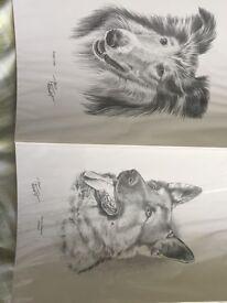 Joblot of dog prints