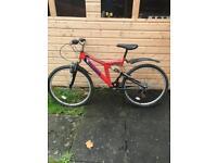 Adult mountain bike (salcano)