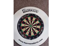 Dart Board and Protective Surround