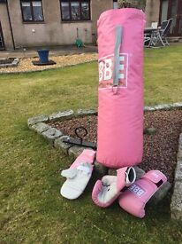 Pink punch bag, ceiling hook and gloves - £20