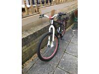 Boys bicycle Mesh x - rated single gear steel frame dirt jump bike