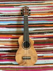 Great Condition Tanglewood Ukulele Union Series - with pickup