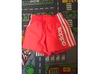 Boys adidas shorts