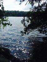 Haliburton Cottage Lot