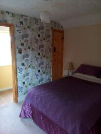 En suite room in house in Nantwich 1/2 mile from train station / town .Single professionals only.