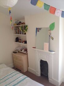 Lovely room to rent in Herne Hill for January and February 2017!