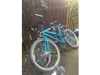 Two free adult bikes. PICK UP ONLY