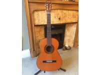 Classical guitar ideal starter instrument