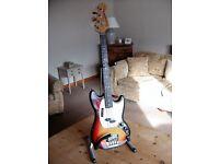 Fender 1974 mustang bass guitar