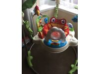 Fisher price Jumperoo, Excellent Condition & Full Working Order. Batteries Included
