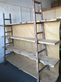 Unique Ladder and Hardwood Shelving and Display Unit