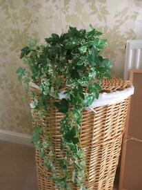 Artificial Ivy and wall mountable Pot
