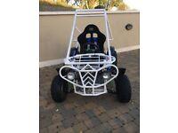 Petrol buggy