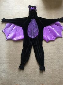 All-in-one luxury bat costume.