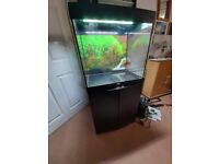 Juwel Lido 120 Fish Tank with Stand in Black