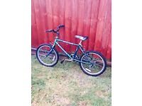 I have bike for children Is very good condition
