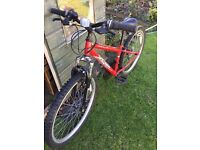Red Boys Apollo Mountain Bike