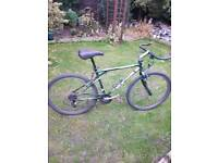 "Gt mountain bike 19"" frame"