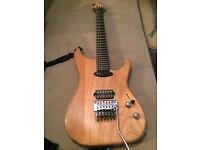 Vigier Bumblefoot Copy Custom Made Guitar