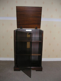 Stereo / Video Storage Cabinet