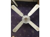Ceiling Fan (White)