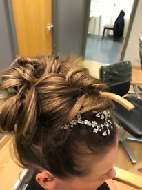 BRAND NEW never worn Hair accessory