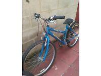 2 girl bikes