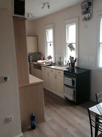 large 1/ 2 bedroom flat with live in Kitchen to rent