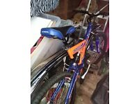 Adult bike very good condition