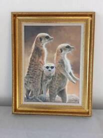 Framed meerkat picture, Three Stooges - Stephen Gayford